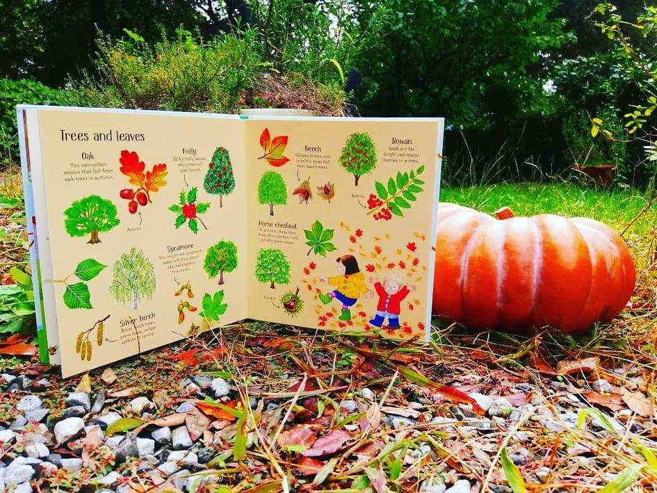 kyrashappyislandbooks usborne poppyandsam nature